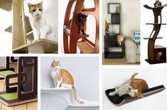 arbre à chat design et multifonctionnel pour habiller l'intérieur - idées et conseils