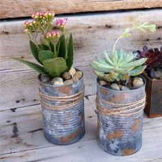 "These upcycled Tin Can Planters are perfect for your succulents or other small plants and flowers. Turn tin cans into DIY planters with an easy faux galvanized metal painting technique. Sprinkle with cinnamon ""rust"" to give the cans an aged look. Small Succulents, Small Plants, Succulents Garden, Garden Plants, Garden Art, Balcony Garden, Diy Planters, Planter Pots, Succulent Planters"