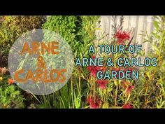 A tour of ARNE & CARLOS garden. The final days of summer. – ARNE & CARLOS #gardening #lifestyle #arnecarlos