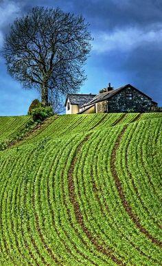 travel   united kingdom & ireland - farmhouse & field - bassaleg, newport, wales