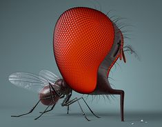 New Work, Insects, Bee, Behance, Gallery, Illustration, Animals, Check, Stone