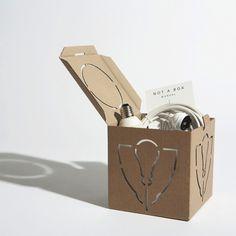Not a Box by Studio David Graas