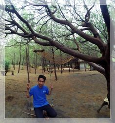 addres: Jalan Lintas Selatan, Patihan, Gadingsari, Sanden, Bantul, Daerah Istimewa Yogyakarta