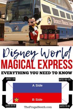 Disney Magical Express Guide & Tips - The Budget Mouse Disney World Hotels, Walt Disney World Vacations, Disney World Resorts, Disney Parks, Disney Worlds, Disney World Reservations, Orlando Disney, Disney Travel, Disney Bound