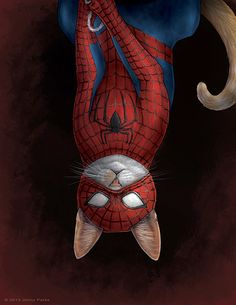 Spider Cat - San Francisco-based science illustrator Jenny Parks has creatively illustrated an adorable clowder of cats as comic book superheroes, villains and the zombie hunting badass Daryl Dixon from The Walking Dead.