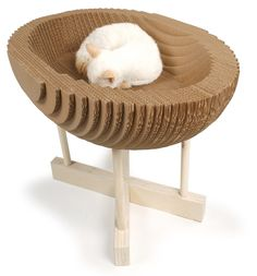 Kittypod - http://www.kittypod.com