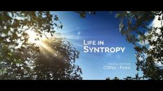 #28 Multistrata Agroforestry - Life in Syntropy is a short film about Ernst Gotsch's amazing work in agroforestry.