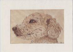 Cani in Cornice: Roky (acquerello seppia)