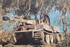 Panzerkampfwagen VI Tiger(H) (8,8 cm) Ausf. H1 (Sd.Kfz. 182) Nr. 112 | Un Tiger numéroté 112 de la 1./schwere Panzer-Abteilung 501 sur le sol Tunisien fin 1942-début 1943.