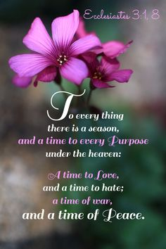 """""""To every thing there is a season and a time to every purpose under the Heaven. A time to love and a time to hate. A time of war and a time of peace."""" - Ecclesiastes 3:1,8"""