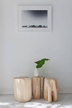 Pampa Horse Print - Indie Home Collective / Photography Eva Kozub