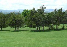 Hudson Valley Resort Golf Course 5 by Hudson Valley Resort, via Flickr