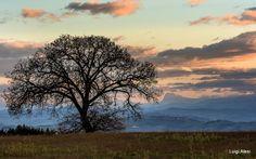 i colori della sera - dalle colline di San Severino Marche