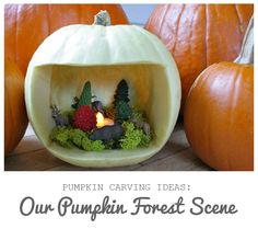 We love creating our yearly pumpkin family. But when we happened upon this link, we decided that this Halloween we needed one extra pumpkin. Here is what we used: LED tealights Moss Trees Animals More inspiration… Celestial Pumpkins (can't wait to try these) Painted Pumpkins 25 Creative Pumpkins Let us know what you are thinking of doing with your pumpkins this year…