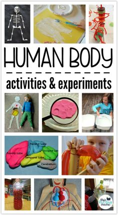 Kids Health Human Body Activities and Experiments for Kids - a collection by This Reading Mama - If you're working on human body unit study, you'll love the collection of human body activities and experiments shared here! Human Body Lesson, Human Body Science, Human Body Unit, Human Body Systems, Preschool Science, Science For Kids, The Human Body, Human Human, Stem For Kids