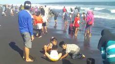 joe58 - Wisata Pantai jogja dan Bandung Anak-anak Gembira