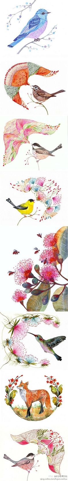 Ola Liola's animal watercolor paintings & illustrations by TevaKiwi These pretty botanical & animal images could make very cute tattoos. it's hard Art And Illustration, Illustrations, Watercolor Animals, Watercolor Flowers, Grafik Design, Art Plastique, Bird Art, Painting & Drawing, Watercolor Paintings