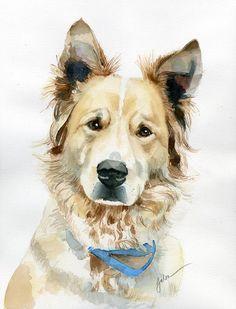 Pet portrait painting - maya by galen hazelhofer. Art Watercolor, Watercolor Animals, Animal Paintings, Animal Drawings, Dog Portraits, Dog Art, Pet Birds, Poster, Maya