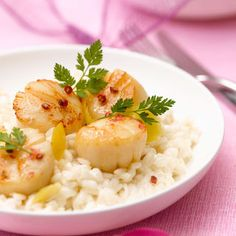 Risotto de saint-jacques