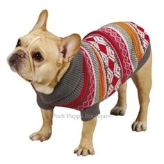 French Bulldog modeling the Northern Lights Sweater- Raspberry- Apparel - Sweater Posh Puppy Boutique