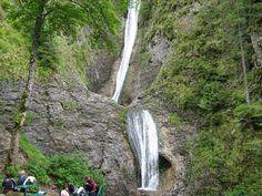 Duruitoarea waterfall in Ceahlău, Romania Flora Und Fauna, The Good Place, Bali, Neon, Outdoor, Beautiful, Nationalparks, Moldova, Amazing Places