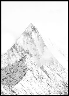 Decorate with posters with photo art. We have a large selection of black and white photography, modern photo prints and classic photo art. At Desenio, you will find photographic prints and posters with a diverse range of photographic art designs that will Black And White Posters, Black And White Canvas, Black White, Poster Shop, Poster Prints, Poster Poster, Forest Poster, Desenio Posters, Nature Photography