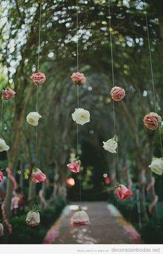 Cortina de rosas colgadas de un hilo