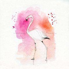 Blule - Blush - Pink Lady