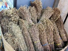 Dried Greek Oregano for sale.