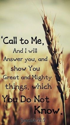 Jeremiah American Standard Bible (NASB) 3 'Call to Me and I will answer you, and I will tell you great and mighty things, which you do not know. Bible Verses Quotes, Bible Scriptures, Faith Quotes, Prayer Quotes, God Prayer, Life Quotes Love, Quotes About God, Gods Promises, Faith In God
