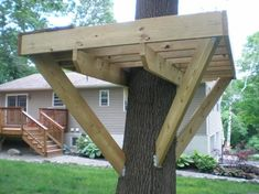 From simple tree house plans for kids to the big ones for adults that you can live in. If you're looking for tree house design ideas, read this article. Backyard Playground, Backyard For Kids, Backyard Projects, Outdoor Projects, Wood Projects, Beautiful Tree Houses, Cool Tree Houses, Pallet Tree Houses, Simple Tree House