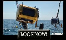 Maine Saltwater Fishing Charter: Maine Inshore & Offshore Fishing Trips - Diamond Pass Outfitters