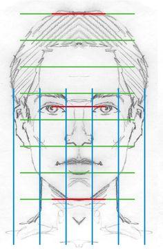 Gesicht-Proportionen 2191
