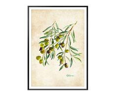 https://www.westwing.pl/dekoracja-cienna-olive-i-53-x-73-cm-1893816.html?c=kampania-olive-garden