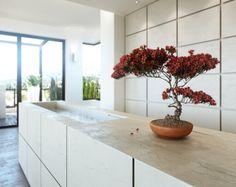 Weiße minimalistische Küche-Bonsai Dekoration