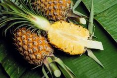 Pineapple Body Scrub For Glowing Skin - Z Living Lip Scrub Homemade, Diy Spa, Younger Looking Skin, Diy Skin Care, Body Scrub, Skin Treatments, Glowing Skin, Healthy Skin, Health And Beauty