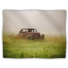 Kess InHouse Angie Turner Forgotten Car Grass Pet Blanket 40 by 30Inch * More info could be found at the image url.