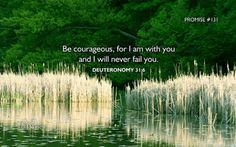 "Promise #131:  Be courageous, for I am with you & I will never fail you.  Deuteronomy 31:6The Message (MSG) 6 ""Be strong. Take courage. Don't be intimidated. Don't give them a second thought because GOD, your God, is striding ahead of you. He's right there with you. He won't let you down; he won't leave you."" Photo:Barry Adams From:365 Promises"