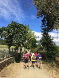 Leaving Melide #Busy_again #Camino 2015 August McG - day 34