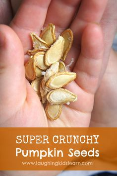 How to roast pumpkin seeds for a crunchy snack kids will love! Great to eat over Halloween too. - Laughing Kids Learn