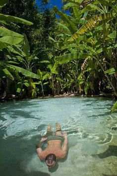 Fervedouro, in Jalapão, Tocantins, Brazil. The fervedouros are true oases that are in the closed vegetation, between… by biolegria Brazil Travel, Costa Rica Travel, Places To Travel, Places To See, Travel Destinations, Beautiful Places To Visit, Wonderful Places, Bora Bora, Places Around The World
