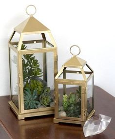 These luxe-looking lanterns are spray painted gold and filled with easy-to-maintain succulents and stones.