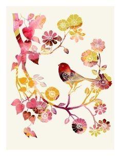 birds birds and more birds.