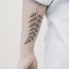 Fern tattoo by Hannah Nova Dudley HannahNovaDudley fern plant linework delicate plants (Photo: Instagram)