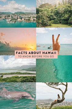 Facts about Hawaii to know before you visit. Get a high-level overview of the state, learn about the language, the weather, and the 8 main islands! #hawaii #oahu #maui #travel