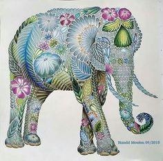 124 Best Animal Kingdom Coloring Book Images On Pinterest Ideas Elephant