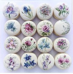 floral macarons by Cake Action OMG its so beautiful! floral macarons by Cake Action OMG its so beautiful! Cute Desserts, Delicious Desserts, Dessert Recipes, Pretty Cakes, Beautiful Cakes, Macaron Cookies, Paint Cookies, Macaroon Recipes, French Macaroons