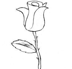 Les 161 Meilleures Images Du Tableau Dessin De Fleur Sur Pinterest