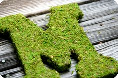 Moss covered letter-my daughter-in-law has done this and it is beautiful...