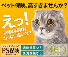 Pet Pet, Japan Design, Web Banner, Banner Design, Coupon, Campaign, Pets, Movie Posters, Free